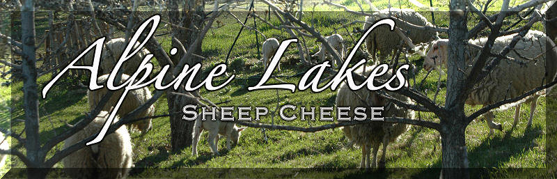 Alpine Lakes Sheep Cheese in Leavenworth Washington.